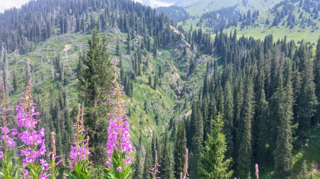 Descending Mt Kumbel